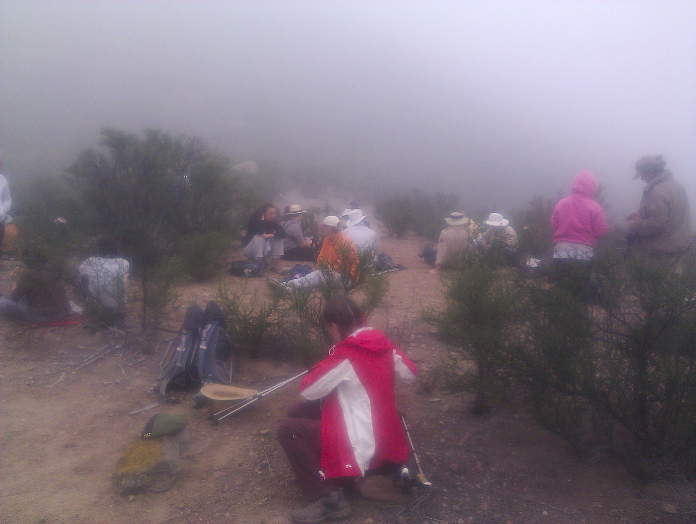 Our bunch in the fog