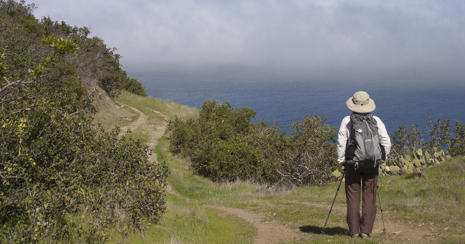 The Trans Catalina Trail somewhere near Black Point