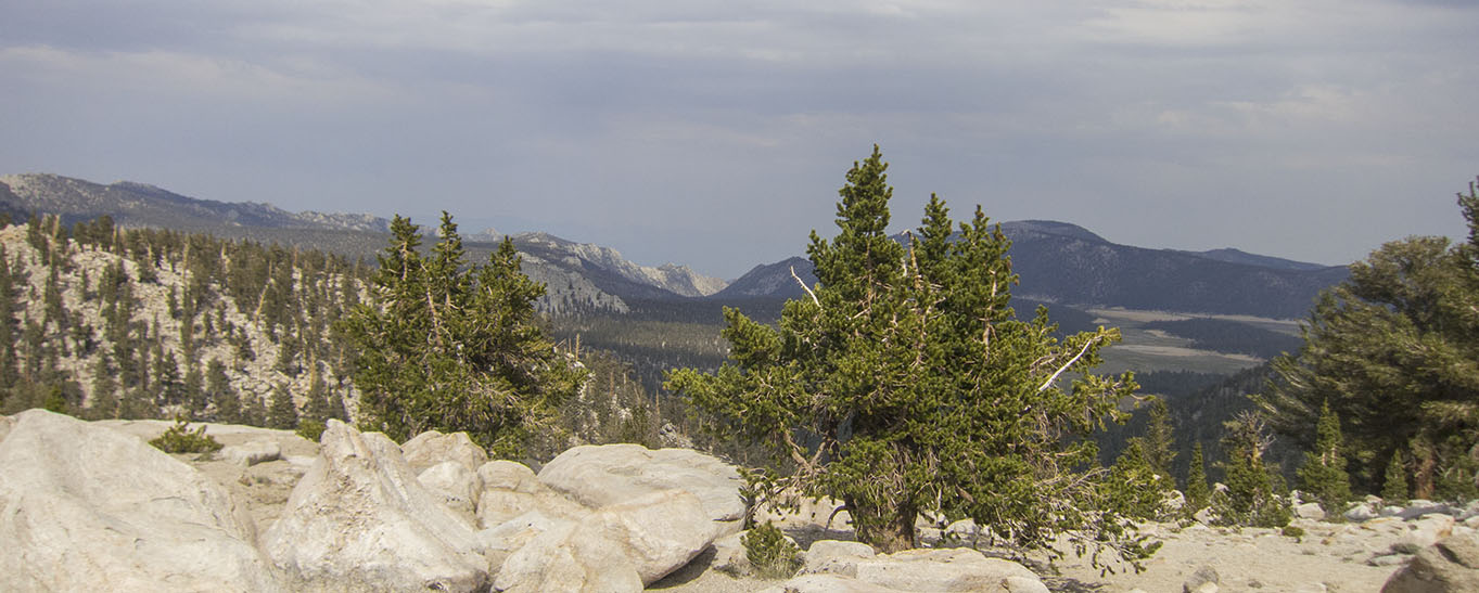 Looking back towards Horseshoe Meadows from Cottonwood Pass