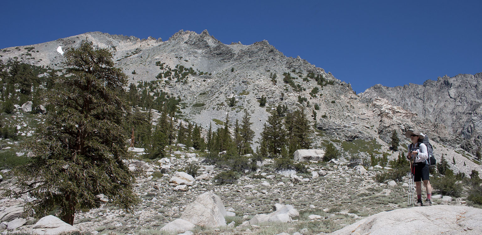 On the Kearsarge Pass trail