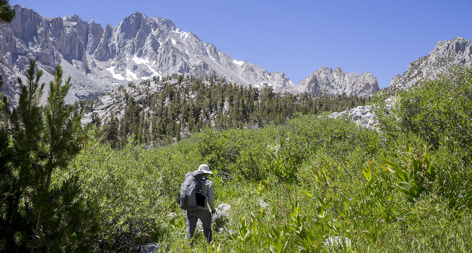 On the Kearsarge Pass Trail with University Peak in the back